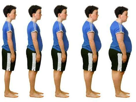Childhood obesity and fast food essay #12